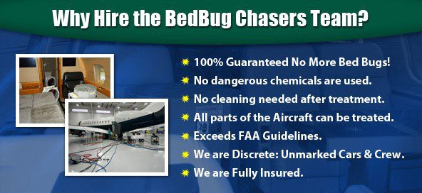 10 Pest Control Franchise Opportunities to Consider - BedBug Chasers