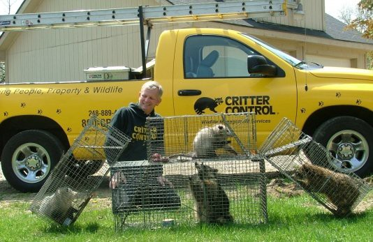10 Pest Control Franchise Opportunities to Consider - Critter Control