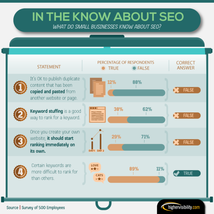 Many Small Businesses Lack SEO Knowledge