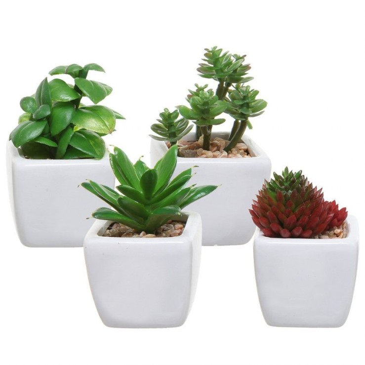 25 Office Desk Plants - Artificial Succulents